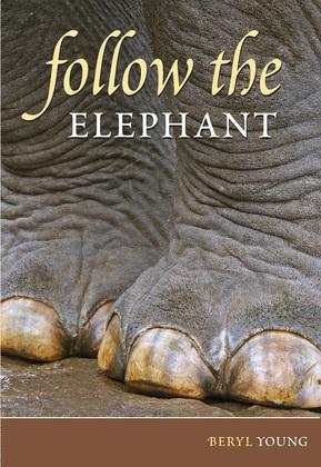 Follow the Elephant