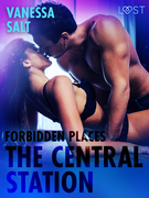 Forbidden Places: The Central Station - Erotic Short Story