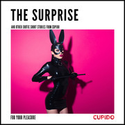 The Surprise - and other erotic short stories from Cupido