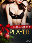 Player - an erotic Christmas story