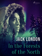 In the Forests of the North
