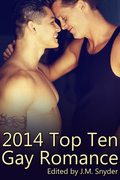 2014 Top Ten Gay Romance