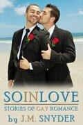 So In Love Box Set
