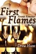 Fireside Romance Book 1: First Flames