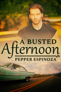 A Busted Afternoon