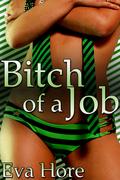 Bitch of a Job