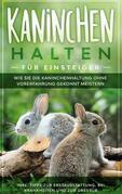 Kaninchen halten für Einsteiger