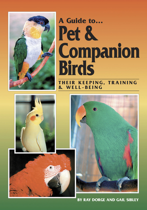 A Guide to Pet and Companion Birds