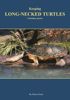Keeping Long-necked Turtles Chelodina species