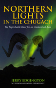 Northern Lights in the Chugach