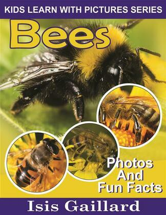 Bees: Photos and Fun Facts for Kids
