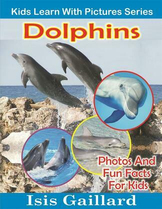 Dolphins: Photos and Fun Facts for Kids