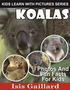 Koalas: Photos and Fun Facts for Kids