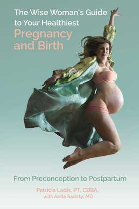 The Wise Woman's Guide to Your Healthiest Pregnancy and Birth
