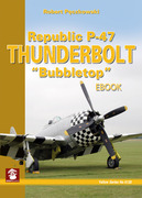 "Republic P-47 Thunderbolt ""Bubbletop"""