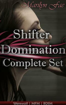 Shifter Domination Complete Set