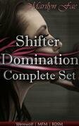 Shifter Domination Complete Set