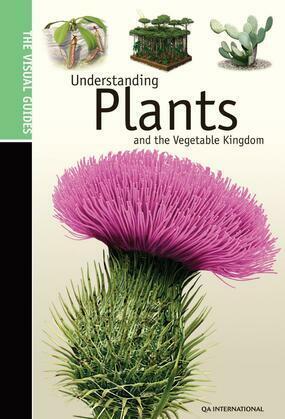 Understanding Plants & the Vegetable Kingdom