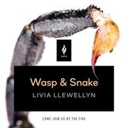 Wasp & Snake