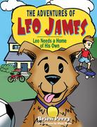 The Adventures of Leo James