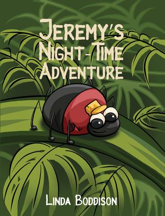 Jeremy's Night-Time Adventure