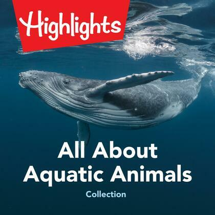 All About Aquatic Animals Collection
