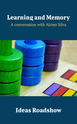Learning and Memory - A Conversation with Alcino Silva