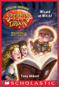 Wizard or Witch? (The Secrets of Droon: Special Edition #2)
