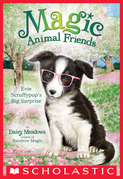 Evie Scruffypup's Big Surprise (Magic Animal Friends #10)