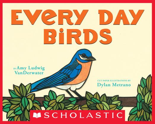 Every Day Birds