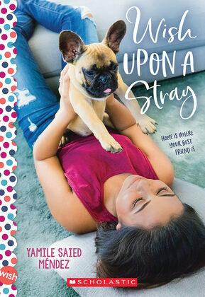 Wish Upon a Stray: A Wish Novel