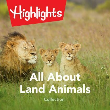 All About Land Animals Collection