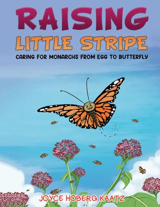 Raising Little Stripe