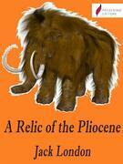 A Relic of the Pliocene