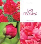 Las peonías - Cultivo y cuidados