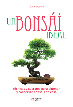 Un bonsái ideal