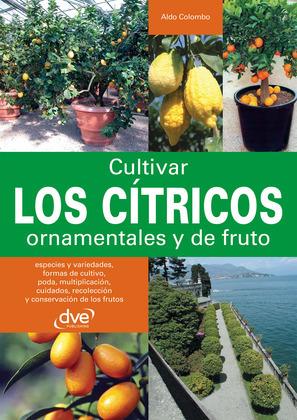 Cultivar los cítricos ornamentales y de fruto