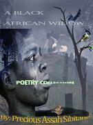 A Black African Widow
