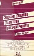 Croissance économique et adaptation du capital productif