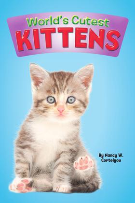 World's Cutest: Kittens
