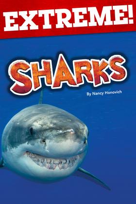 Extreme: Sharks