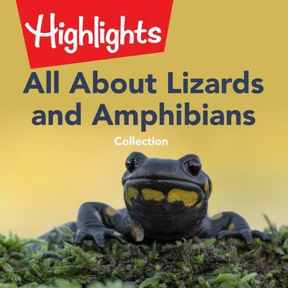 All About Lizards and Amphibians Collection