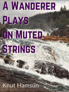 A Wanderer Plays on Muted Strings