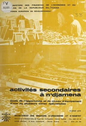 Activités secondaires à N'Djamena