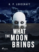 What the Moon Brings