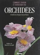 Comment choisir et entretenir vos orchidées