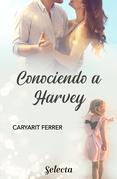 Conociendo a Harvey
