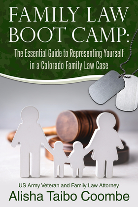 Family Law Boot Camp