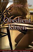 Obedient Kitten