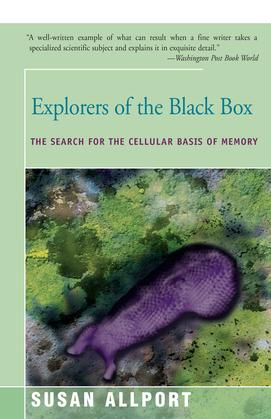 Explorers of the Black Box